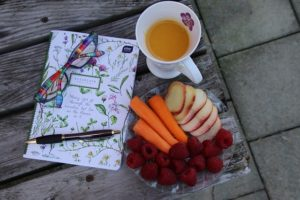 Deník kalorií